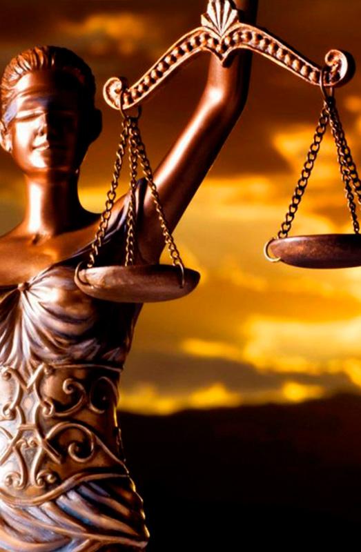 Кейс Криминальный адвокат